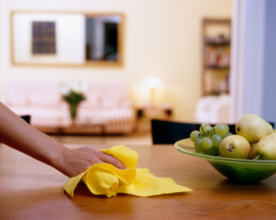 florida gulfside cleaning services for residential and commercial